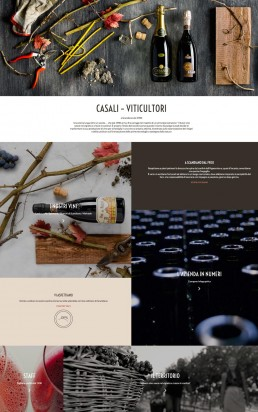 web design & development per Casali Viticultori by AD99