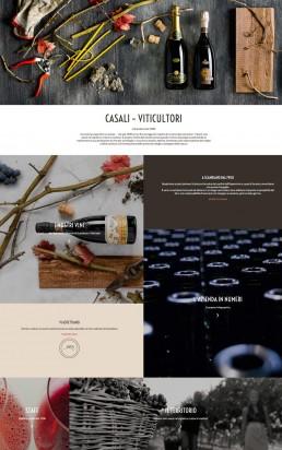 web design & development per Casali Viticultori by AD99
