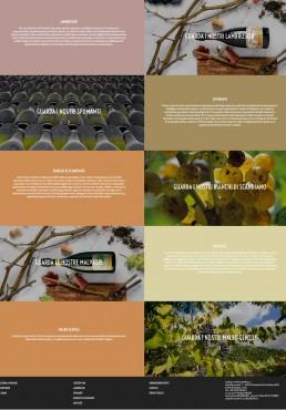 sito web di Casali Vini