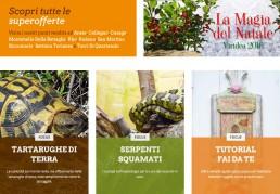 sito web della catena di Garden Center VIRIDEA