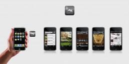 Mobile interface per Castelli Modenesi